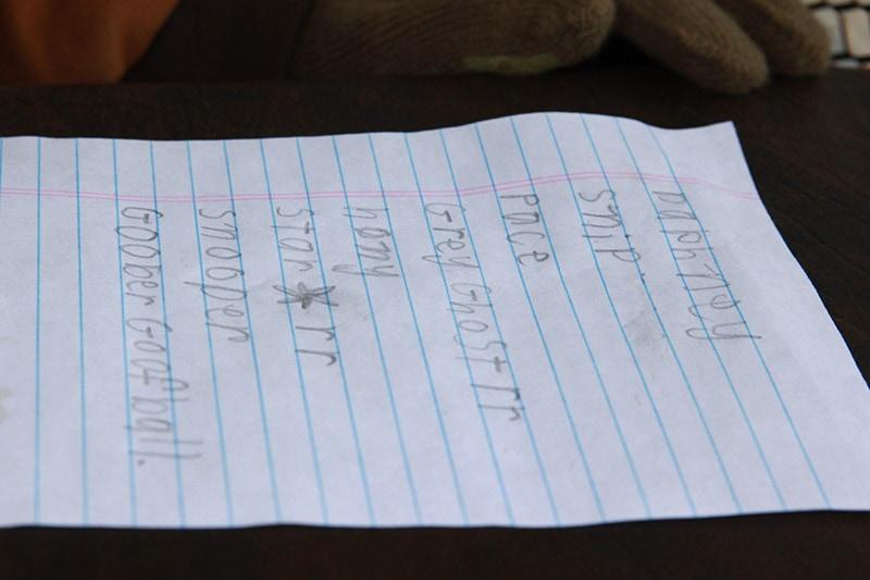 boys list of horse names