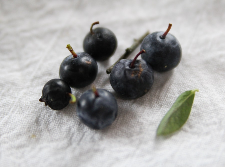Blueberries with leaf and stem