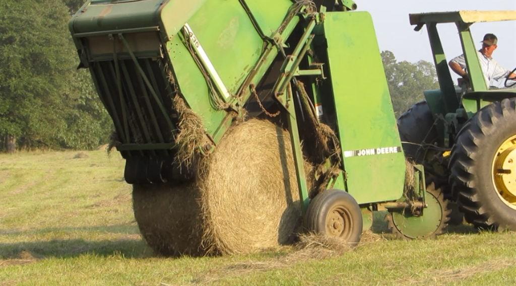 Hay baler releasing hay