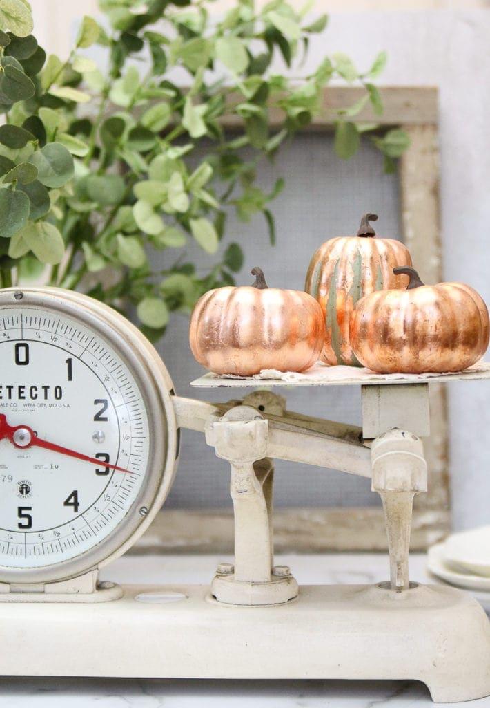 showing what copper leaf pumpkins look like
