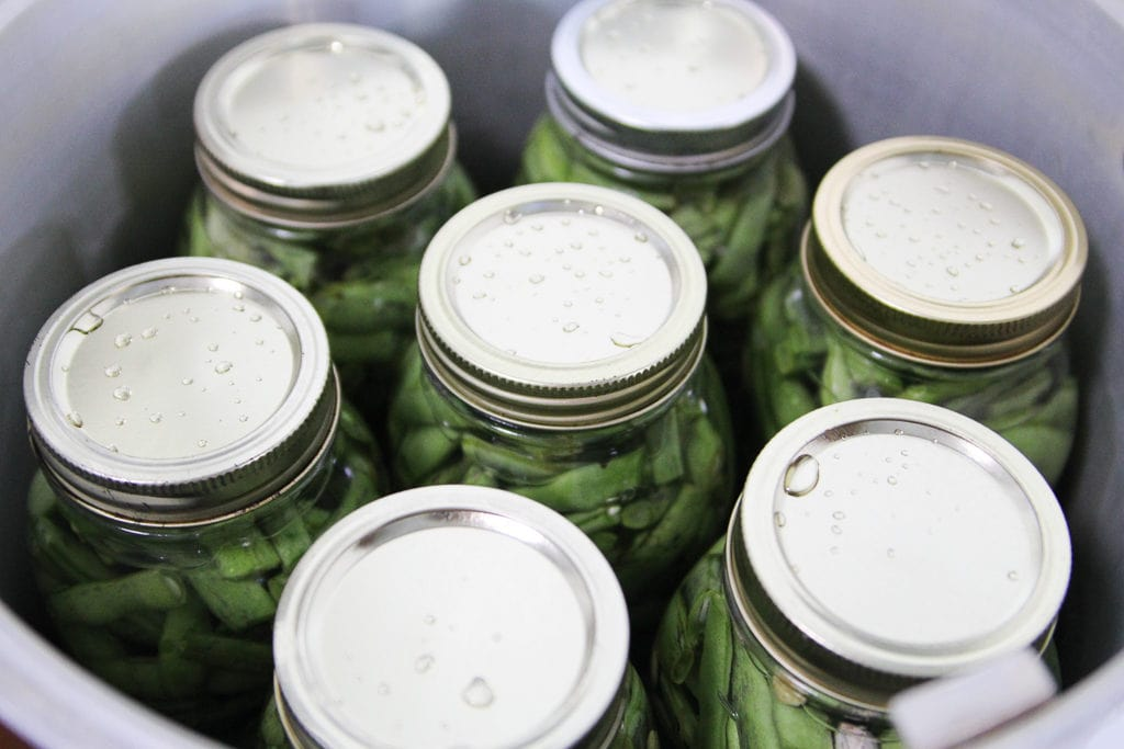 Showing green beans in the canner