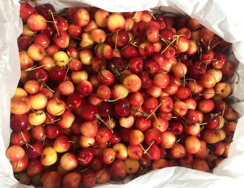 case of cherries