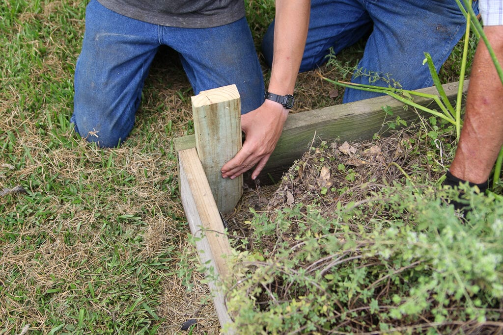 placing the stake in the corner of the raised bed